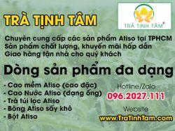 Atiso tại TPHCM